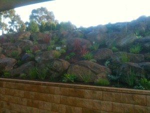 Retaining wall and Landscaping in Rowville